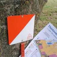 New Orienteering course